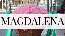 BOTon-magdalena