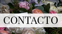 CLEVELES_contacto