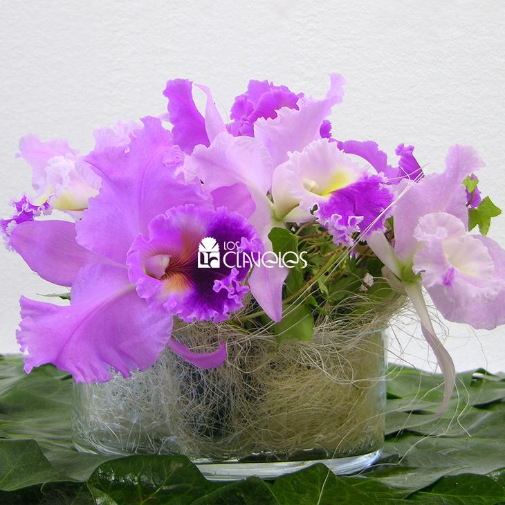 flores-fiestas-04