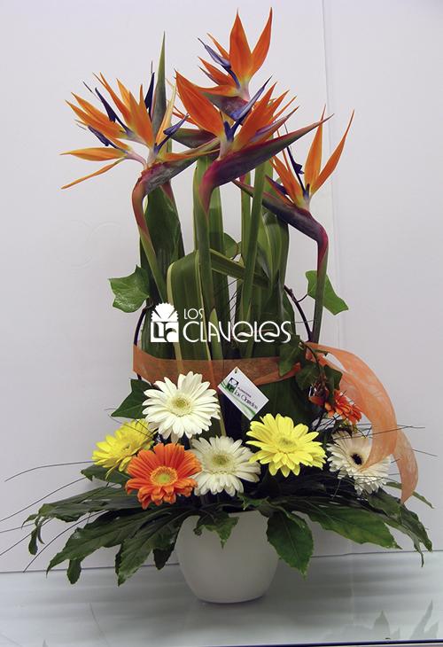flores-regalo-01